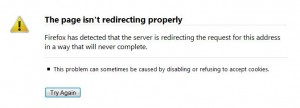 wp-redirect-error